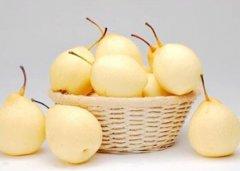 秋季吃梨润肺止咳 7类人群不适食用