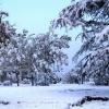寒冬季节 糖尿病患者如何预防病发?
