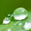 雨水节气养生 起居饮食4招调养脾胃