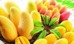 男性养生多吃芒果好处极多