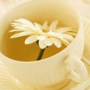 白领记忆力衰退怎么办 五种食物有助提高记忆力