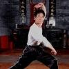 武术养生之蔡李佛拳由来及练习方法