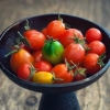 常吃番茄养颜治病 西红柿的10大养生功效