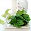 2款菠菜美食消脂利尿健康瘦(菠菜减