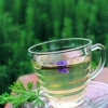 薰衣草茶的功效与作用 安神助眠改善头痛