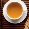 苦丁茶的功效与药用价值