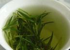 春季保健养生 五茶养生帮你击退风